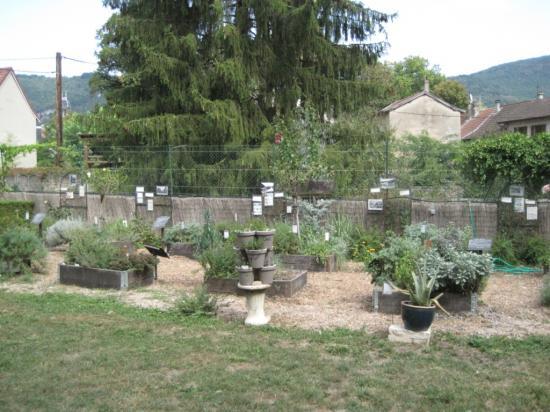 Jardin à Vertrieu (superbe)